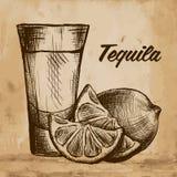 Fles van tequila met kalk en glas Met de hand geschilderd Stock Foto