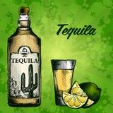 Fles van tequila met kalk en glas Met de hand geschilderd Royalty-vrije Stock Afbeeldingen