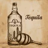 Fles van tequila met kalk en glas Met de hand geschilderd Stock Fotografie