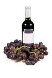 Fles van wijn en druiven Stock Fotografie