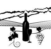 Fles van wijn en wijngaard Stock Afbeeldingen