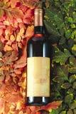 Fles van wijnpresentatie op het concept van het de herfstblad stock foto