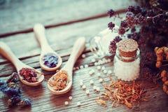 Fles van witte homeopathiedruppeltjes en droge gezonde kruiden Royalty-vrije Stock Fotografie