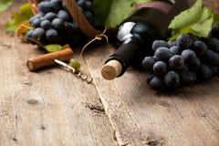 Fles wijn stock afbeelding