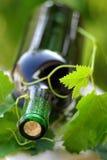 Fles wijn Royalty-vrije Stock Foto