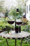 Fles Wijn en glazen op een tuinlijst royalty-vrije stock foto