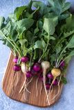 Flesh colored radish. On a wooden board stock images