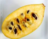 Flesh of the common pawpaw fruit Stock Photos