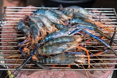 Flesh prawns grilled barbecue on a gridiron Stock Photography