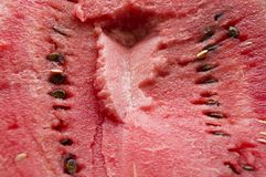 The flesh of watermelon. Pictured red, juicy flesh of watermelon stock photography