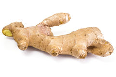 Fleshy fragrant ginger root. Isolated. Studio Photo Royalty Free Stock Images
