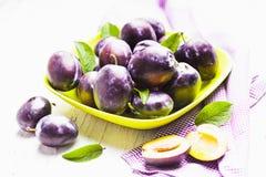 Fleshy plums Royalty Free Stock Photo