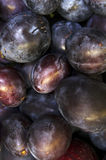 Fleshy plums. Fleshy wet plums close up as a background royalty free stock images