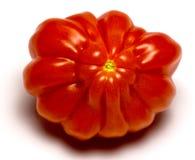 Fleshy tomato Royalty Free Stock Photography