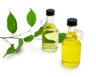 Flessen aromatische olie Stock Foto