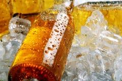 Flessen bier dat in het ijs ligt Stock Fotografie