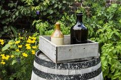 Flessen in de tuin Royalty-vrije Stock Afbeeldingen