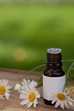 Flessen essentiële olie royalty-vrije stock foto
