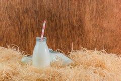 Flessen melk royalty-vrije stock afbeelding