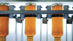 Flessen met alcohol op een wiskyproductielijn stock video
