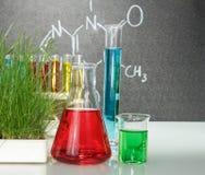 Flessen met kleurrijke vloeistoffen royalty-vrije stock afbeeldingen