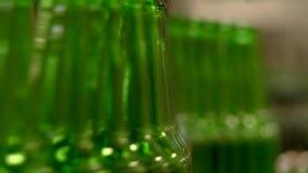 Flessen op band in een brouwerij stock footage