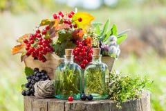 Flessen tint, doos van gezonde kruiden en bessen royalty-vrije stock foto's