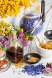 Flessen tint, mortier, kruik van gezonde kruiden en schalen royalty-vrije stock foto