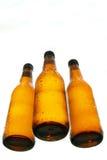 Flessen van bier verschillende mening stock foto's