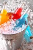 Flessen van koelere dranken met ijs stock fotografie