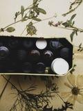 Flessen van oli?n en droge gezonde kruiden, het helen kruiden Kruiden perforatum Medicine Gestileerd Retro royalty-vrije stock fotografie