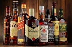 Flessen van verscheidene whiskymerken van de V.S., Ierland en Schotland Stock Afbeeldingen