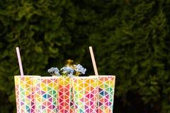 Flessen vers gedrukt sinaasappel en bessensap die zich op een houten dienblad op een kleurrijke turkooise blauwe picknicklijst be royalty-vrije stock afbeeldingen