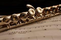 Flet na szkotowej muzyce Fotografia Royalty Free