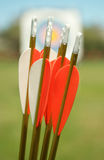 Fletched Arrows Royalty Free Stock Photo
