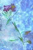 Fleur à un arrière-plan de vase Photographie stock