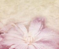 Fleur épousant le rétro fond Photographie stock