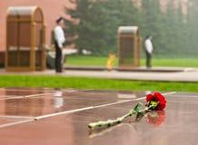 Fleur étendue à la tombe du soldat inconnu Photo stock