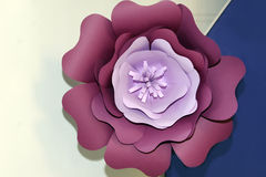 Fleur Photographie stock libre de droits