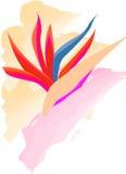 Fleur abstraite d'art-paradis Photographie stock