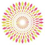 Fleur abstraite de cercle de vecteur Photos libres de droits