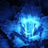 Fleur de fractale Photographie stock