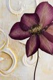 Fleur appuyée de clematis Photographie stock libre de droits