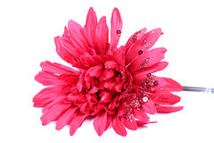 Fleur artificielle de gerbera Image libre de droits