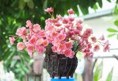 Fleur artificielle de Sakura Image stock