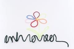 Fleur avec les pétales multicolores Photo libre de droits