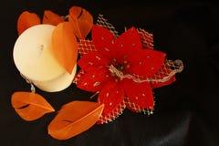 Fleur avec une bougie et une plume Images stock
