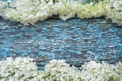 Fleurs D Hortensia Sur Le Fond Blanc Configuration Plate Vue