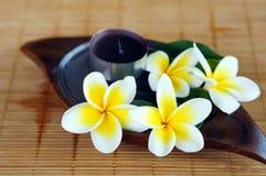 Fleur blanche de frangipani sur le couvre-tapis en bambou photos stock
