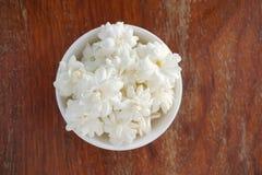 Fleur blanche de jasmin Photographie stock libre de droits